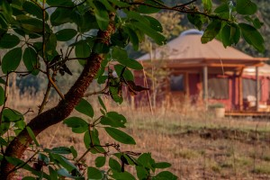Yurt at Bell Valley Retreat