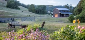 the barn at Bell Valley Retreat in Anderson Valley, Mendocino County, California