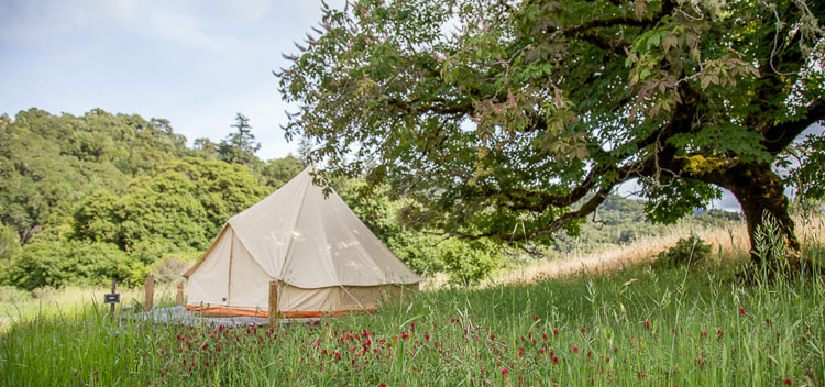 tent location tent at Bell Valley Retreat in Anderson Valley, Mendocino County, California