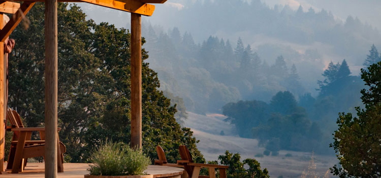 peaceful view of the wooded hillside at The Toll House at Bell Valley Retreat in Anderson Valley, Mendocino County, California