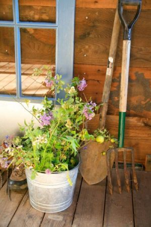 a metal bucket with planted flowers and garden tools lean against a weathered wood wall