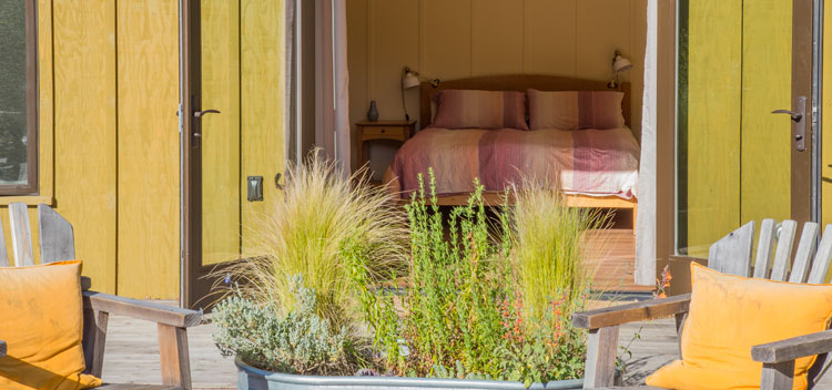 Creekside bedroom with doors open to the patio at Bell Valley Retreat