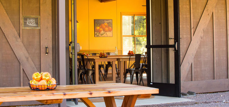 the patio at the barn with picnic table and a view into the sunny downstairs meeting room